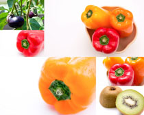 辣椒與茄子攝影高清圖片