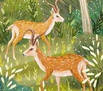 山头森林绘画动物PSD素材