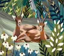 森林绘画动物PSD素材