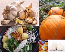 大蒜南瓜食物攝影高清圖片