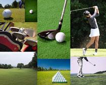 高爾夫體育運動拍攝高清圖片