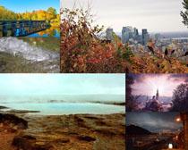 城市樹木風景拍攝高清圖片