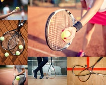 网球体育运动摄影高清图片