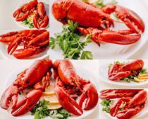 美食龙虾摄影高清图片