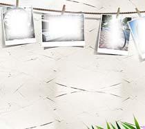 墙壁上的相片纸PSD素材