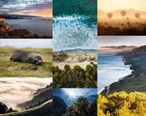 海邊與森林風景拍攝高清圖片