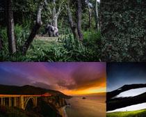 森林海島山峰攝影高清圖片