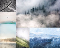 云霧森林風光拍攝高清圖片