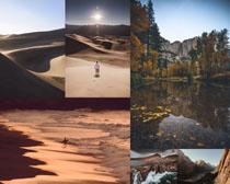 沙漠海灘樹木湖泊攝影高清圖片