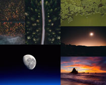 天空月亮樹林風光拍攝高清圖片