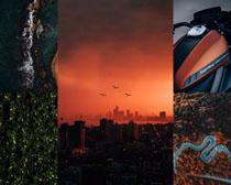 城市森林風光拍攝高清圖片