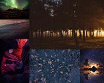 樹林景觀風光拍攝高清圖片