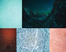 水滴樹林背景風光拍攝高清圖片