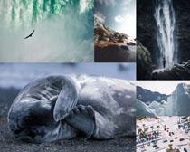 瀑布雪山風光拍攝高清圖片