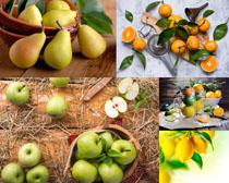 蘋果梨桔子攝影高清圖片