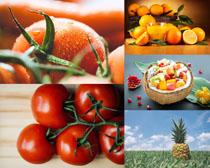 西红柿橙子水果摄影高清图片