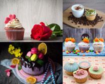 玫瑰花巧克力蛋糕摄影高清图片