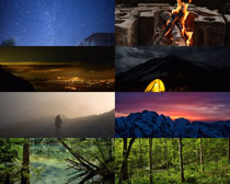 森林风光写真拍摄高清图片
