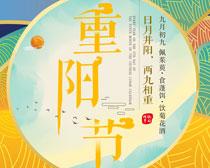 九九重阳节海报PSD素材