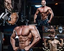 健身房肌肉男子摄影高清图片