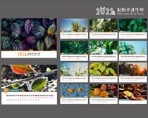 2021植物风光台历设计矢量素材