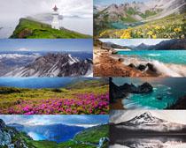 大海山川花朵风景拍摄高清图片
