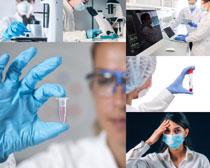 国外医生研究实验拍摄高清图片