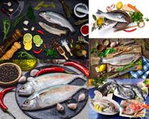 新鮮海魚與配料攝影高清圖片