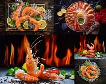 冰塊檸檬大蝦展示攝影高清圖片
