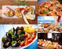 貝殼海蝦美食攝影高清圖片