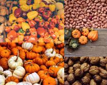 南瓜核桃花生食物攝影高清圖片