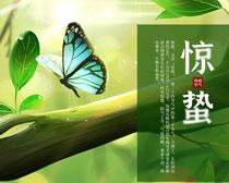立春惊蛰海报PSD素材