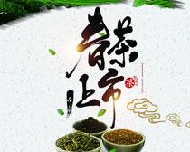 春茶上市宣传海报PSD素材