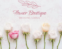 玫瑰花朵背景裝扮PSD素材