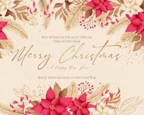 圣誕背景花邊角背景PSD素材