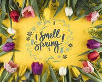 漂亮的花朵相框裝扮PSD素材