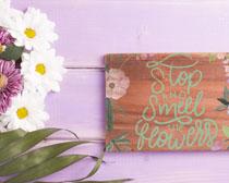 漂亮花朵與木板字PSD素材
