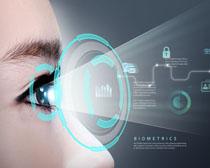 商务眼镜科技图表PSD素材