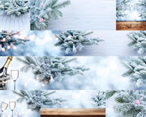 圣誕松樹雪景拍攝高清圖片
