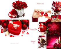 情人节玫瑰花礼物摄影高清图片