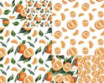 桔子水果绘画背景摄影高清图片