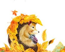 小刺猬与枫叶秋天横幅PSD素材