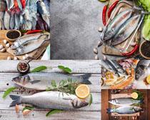 海鲜海鱼食物展示摄影高清图片