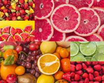 西瓜葡萄草莓水果组合摄影高清图片