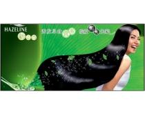 夏士蓮洗發水廣告秀發美女psd分層素材