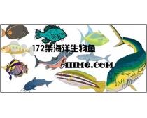 172条海洋生物鱼时时彩平台娱乐