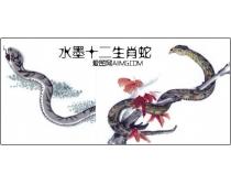 水墨十二生肖蛇