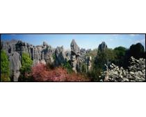 巨幅石林风景图片