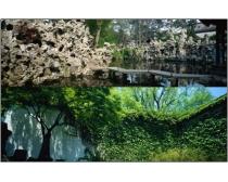 14张巨幅园林景观高清图片素材