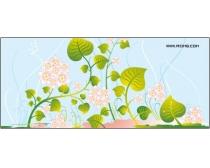 漂亮植物花藤时时彩平台娱乐